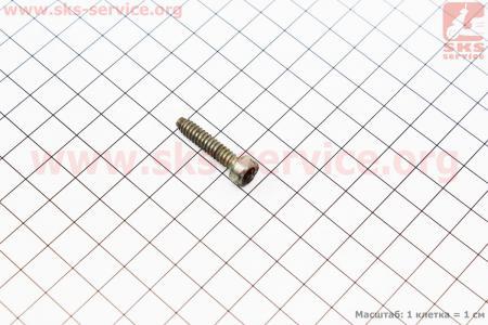 Болт крышки (поддона) цилиндра IS D5x24 ОРИГИНАЛ, (с разборки) для бензопил Stihl