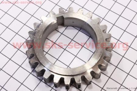 Шестерня коленвала распределительная R170F/R175A/R180NM З/ч на двигатель дизельный R-175N/180N/ - 7/9 л.с.